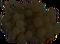 HO StillLife Grapes-icon