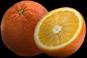 File:HO BriggsRoseGarden Orange-icon.png