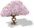 Marketplace Sweetheart Tree-icon