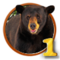 Quest Bear With Me Part 1-icon