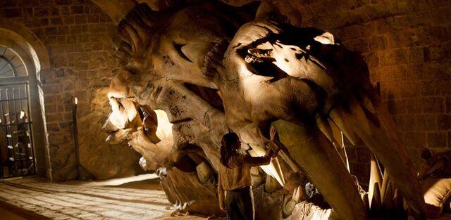 Archivo:Cráneo de dragón HBO.jpg
