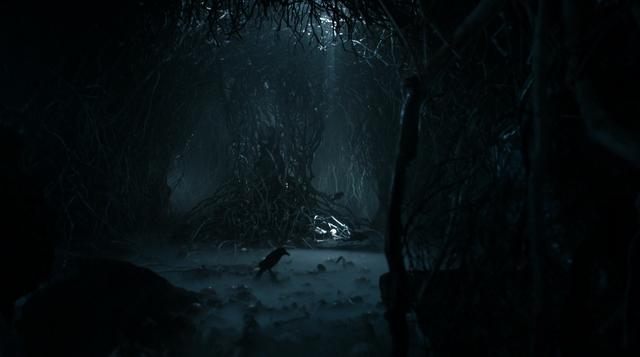Archivo:Cueva cuervo de tres ojos HBO.png