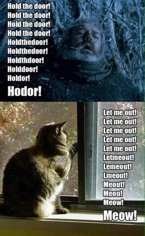 Archivo:Meow.jpg