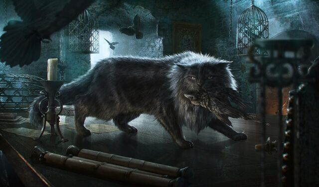 Archivo:Balerion the Cat by Jordi González©.jpg