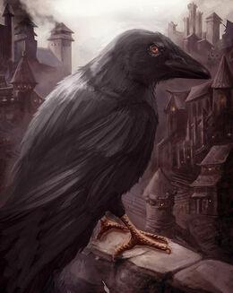 Dark Wings, Dark Words by Eva Maria Toker©