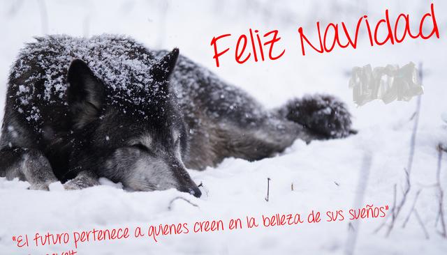 Archivo:Feliz navidad.png