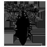 Archivo:Emblema Greyjoy.png