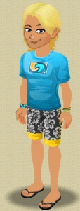 File:Male Level 1 Surfer Outfit.jpg