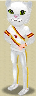 File:Male Level 1 Mascot Outfit.png