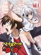 High School DxD Vol.4 DVDx