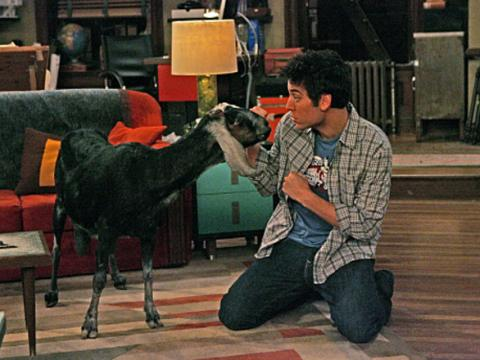 File:Ted-and-the-goat 480x360.jpg