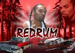 Redrum-interview-pic-1-