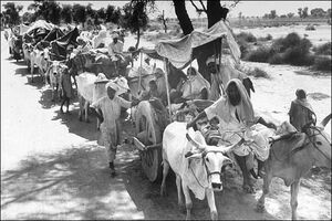 Oxcart-train1947partition