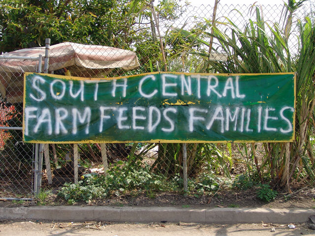 File:South Central Farm 2.jpg