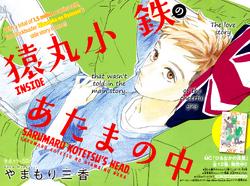 Inside Sarumaru's Head Cover Page