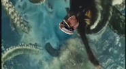 Hartenstein Kraken