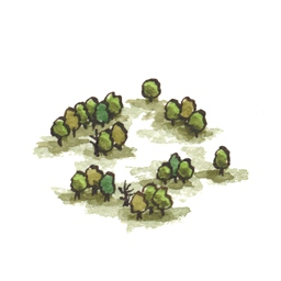 File:Fangorn3 (2).jpg
