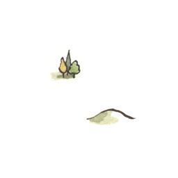 File:Shire1 (2).jpg