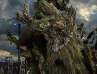 File:Treebeard2.jpg