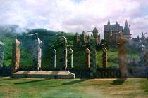 Quidditch Pitch2