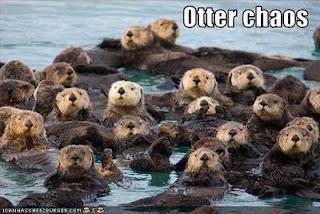 File:Otter chaos.jpg