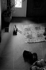 Shoes by the door
