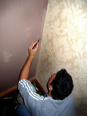Decorating October 2006 001
