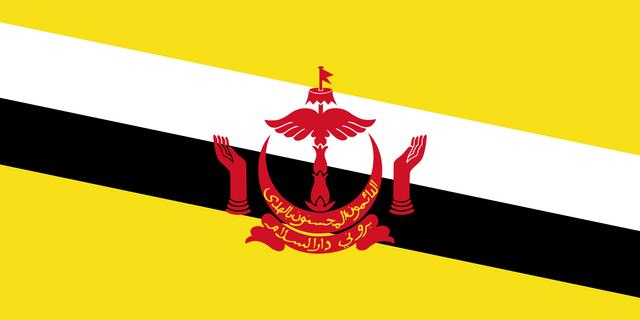 File:Flag of Brunei svg.png