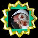 File:Badge-2392-7.png