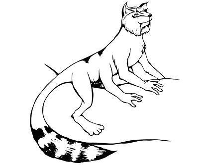 File:Male Treecat HOS eARC p313.jpg