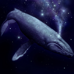 Space-whale-race