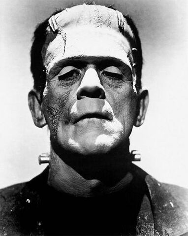 File:Frankenstein's Monster (Universal Classics).JPG