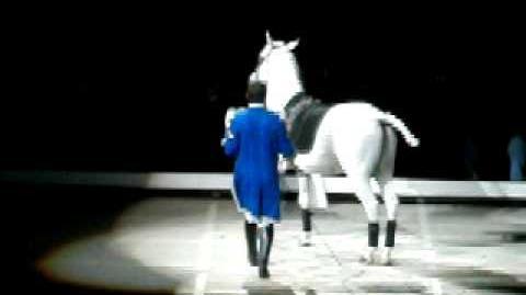 Lipizzaner Stallion Show 2 28 10