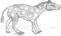Eohippus drawing
