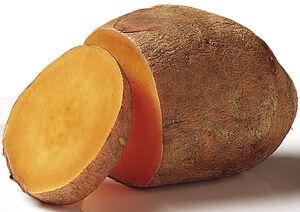 5aday sweet potato