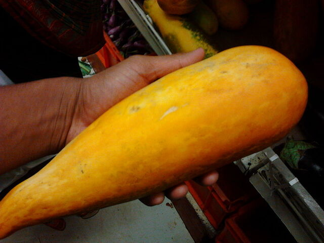 File:An Indian yellow cucumber.jpg