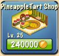 Pineapple Tart Shop Facility