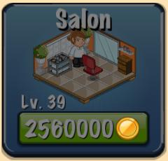File:Salon Facility.png