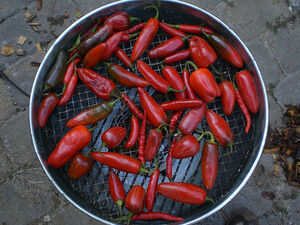 DIY Chipotle peppers