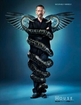 House role model synopsis