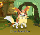 How to have a paw-some den on animaljam Wiki