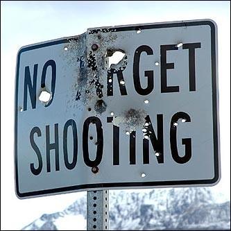 File:Targetshooting.jpg