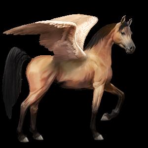 File:Arabian Pegasus - Dun.png