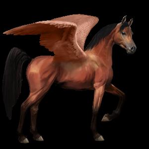File:Arabian Pegasus - Cherry Bay.png