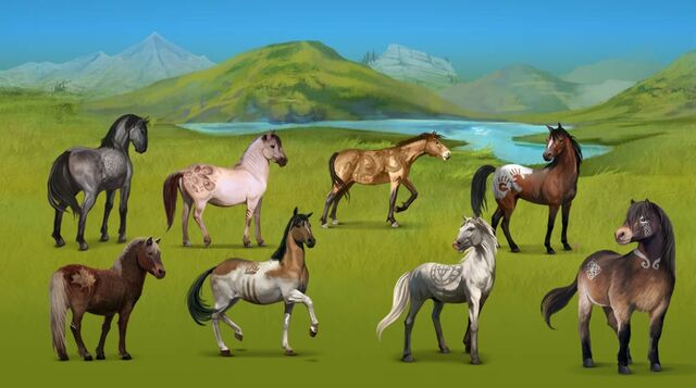 File:Wild Horses.jpg