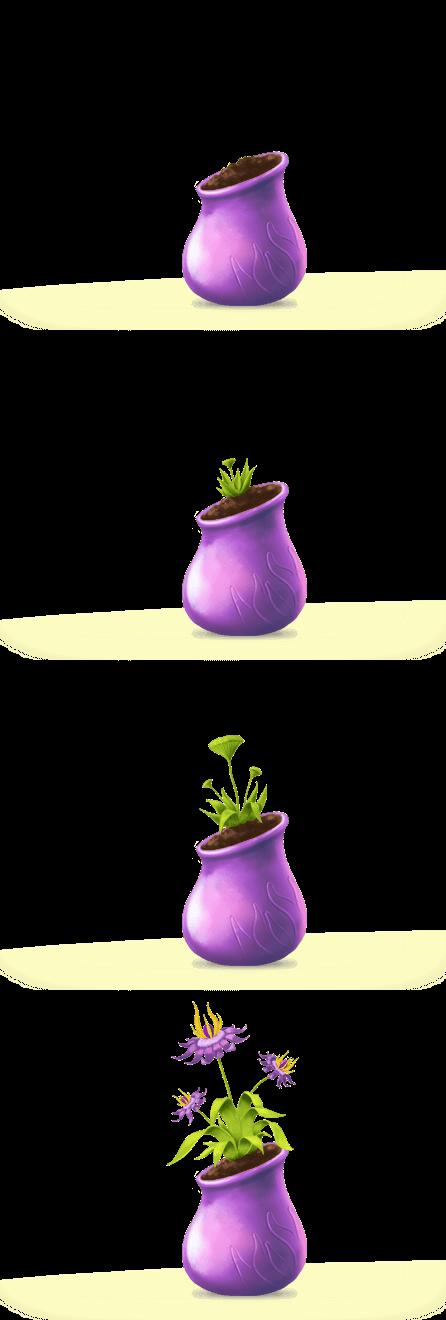 Graine-violette