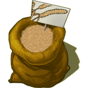 Graines-ble