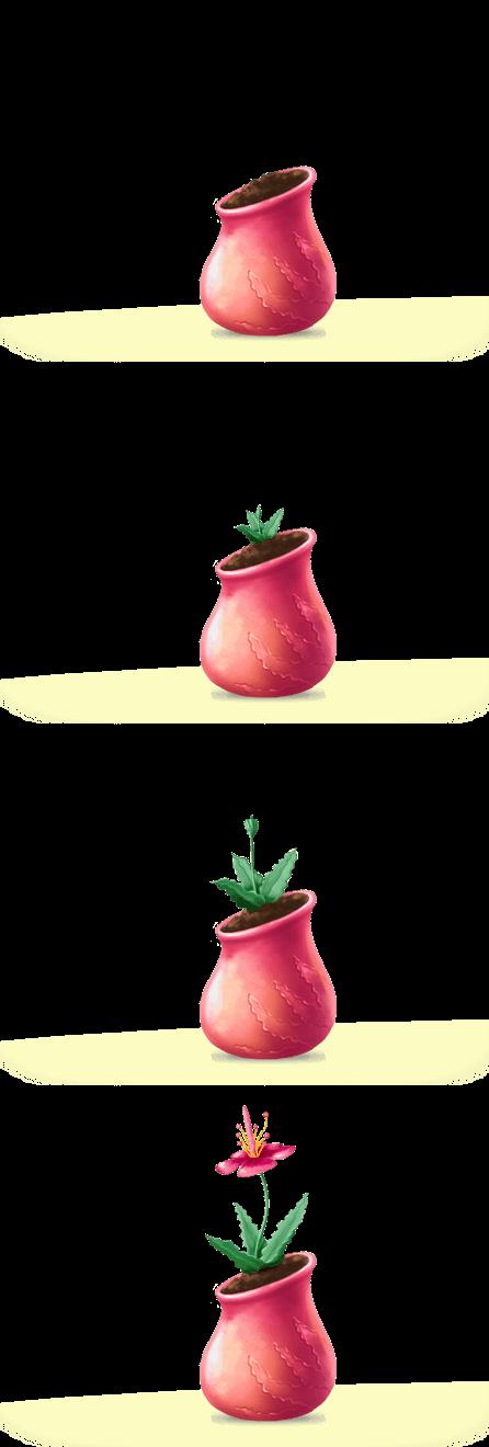 Graine-rose