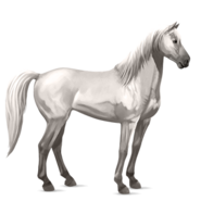 Mustang Hellgrau Alt