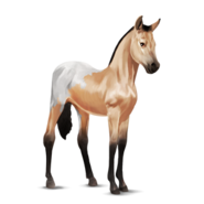 Appaloosa Altes Design Fohlen Schabracken-Falbe